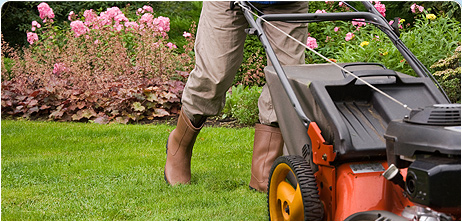 The appraiser is required to inspect the interior and exterior of your property so be sure your yard looks inviting and well kept.